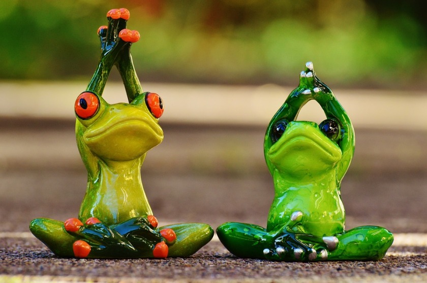 frogs-1030283_960_720